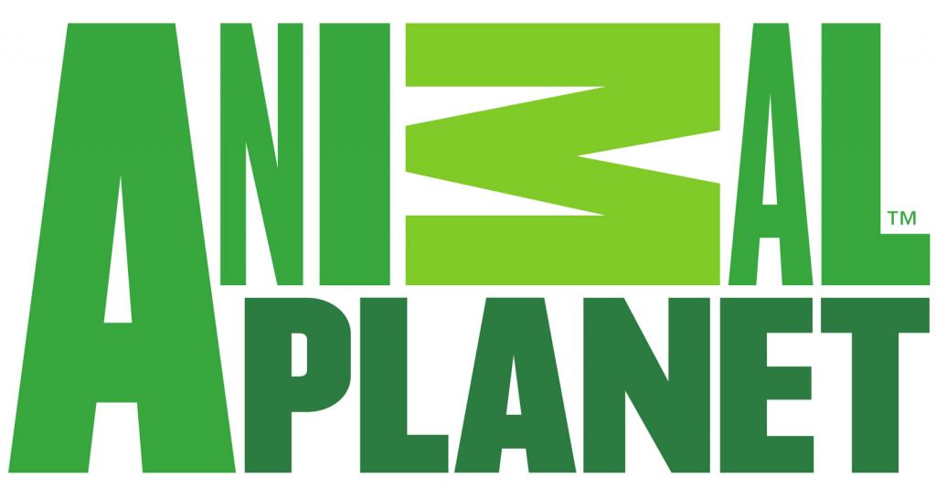 логотип планета: